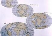 Continental Drift Evidence