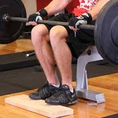 Barbell Seated Calf Raise.