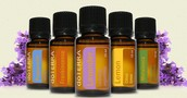 Sample and experience the doTERRA essential oils