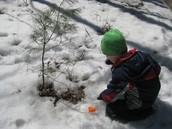 Winter Inquiry