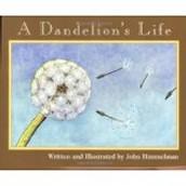 A Dandelion's Life ~ John Himmelman