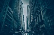 Dense Cities