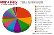 What are the Types of Bullying?