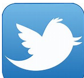 How to Site a Tweet