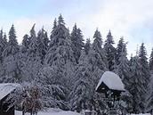 Der Thüringer Wald im Winter.