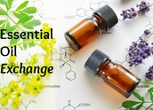 Future January Essential Oil Exchange Dates and Locations