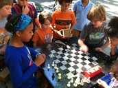 Chess NYC Brooklyn Camp
