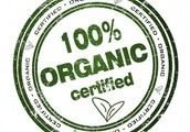 "Organic food, better than any other ""foods""!"