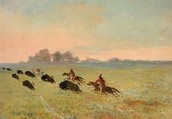 Comanches hunting buffalo