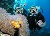 Great Barrier Reef Exploration