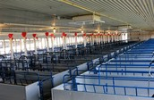 farrowing facility
