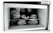He stored body parts in his refrigerator.