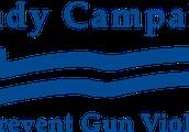 Dan Gross Brady Campaign logo