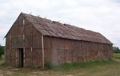 Pointed Longhouse