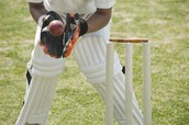 Graeme White of Canbet - The Rules of Cricket