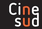 Wat is Cinesud?