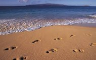 Leave only footprints behind you