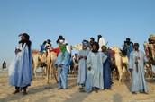 The Tuareg