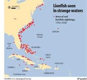 Lionfish invades US!!
