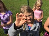 We found a larvae (something crawled out of it!).