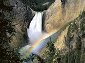 5 Fun facts about Yellowstone National Park.