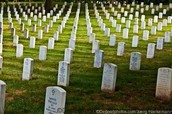 Just a few graves from the war