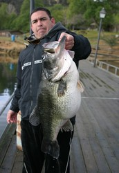 what is the biggest largemouth bass ever caught?