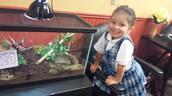 Le estoy mirando la nueva mascota ... Lázaro, la rana !