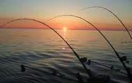 like fishing