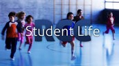 Students love their life
