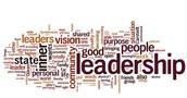 Culture, Leadership & Caring