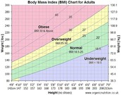 Obesity Characterization based on Body Mass Index