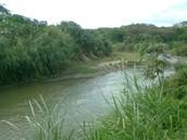 Río Tuy