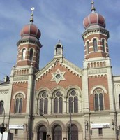 Synogogues, where jews worship