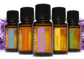 Makeover your Medicine Cabinet, a guide to essential oils, at Inspire Fitness of Columbus