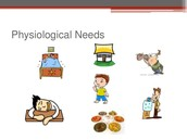 First Level: Physiological Needs