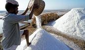 Sea Salt Making