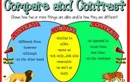 Compare / Contrast
