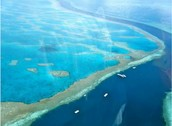 the coastline of the great barrier reef