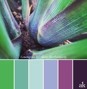 Colour 01