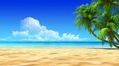 Me gustaba ir a la playa porque me relajaro.