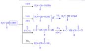 Реакции, обусловленные карбоксильной группой