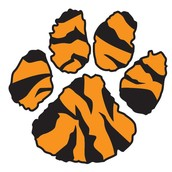 Tiger Pals Club