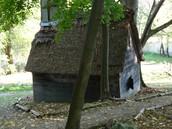 Hester's House