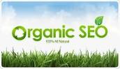 Organic SEO System Best To Get Eternal Higher Rankings