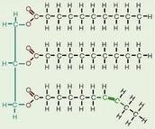 information on macromolecules.