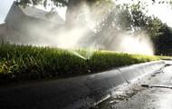 ✓ No watering
