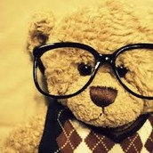 chelsea the smart nerdy bear