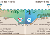 Degraded bay health and Improved bay health