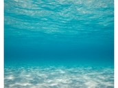 Глава 5  Интересные факты о воде